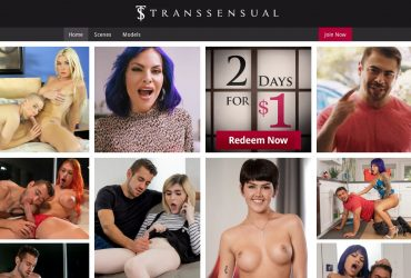 Transsensual - All-Best-XXX-Sites